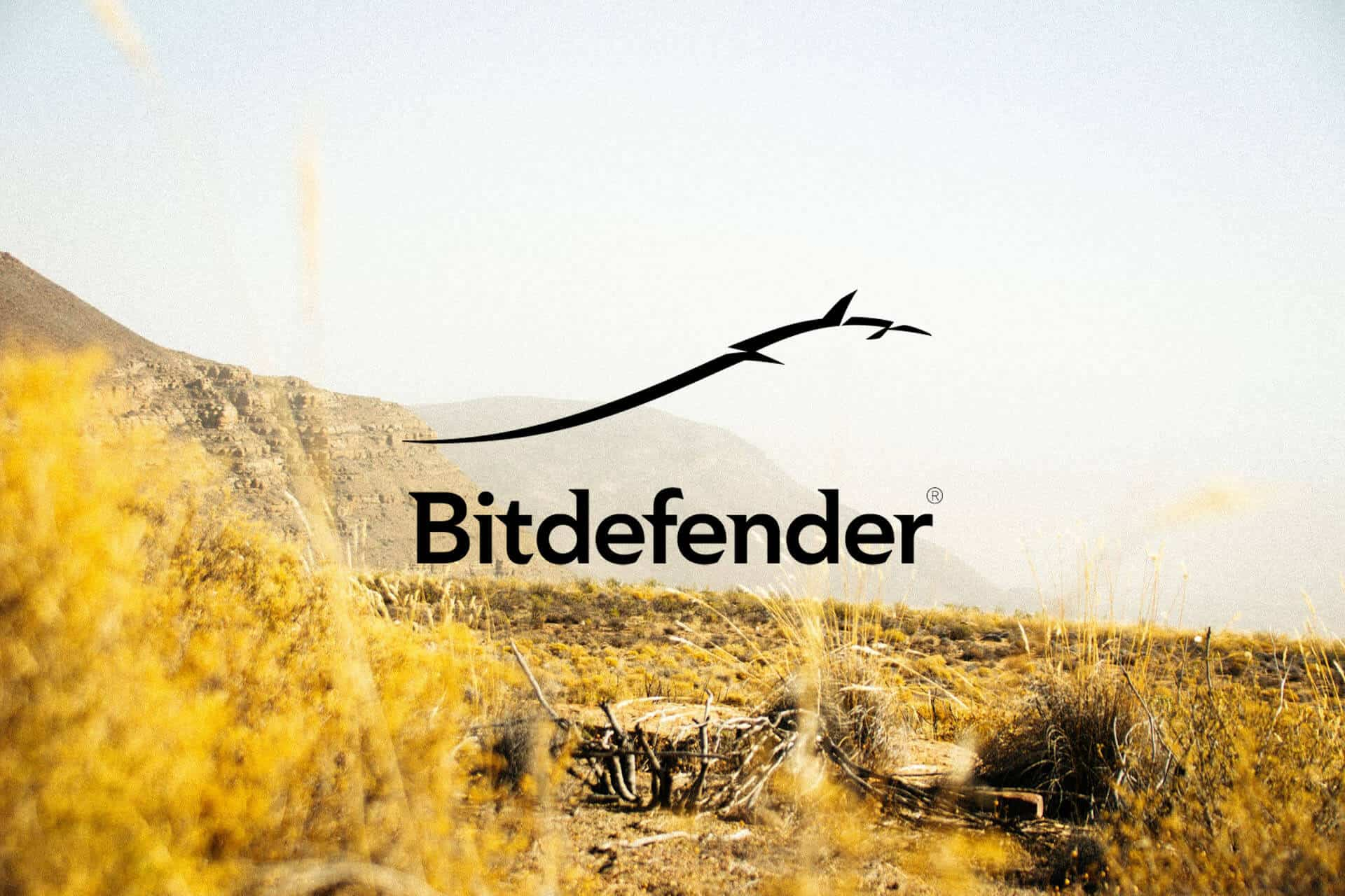 northern cape anitvirus bitdefender